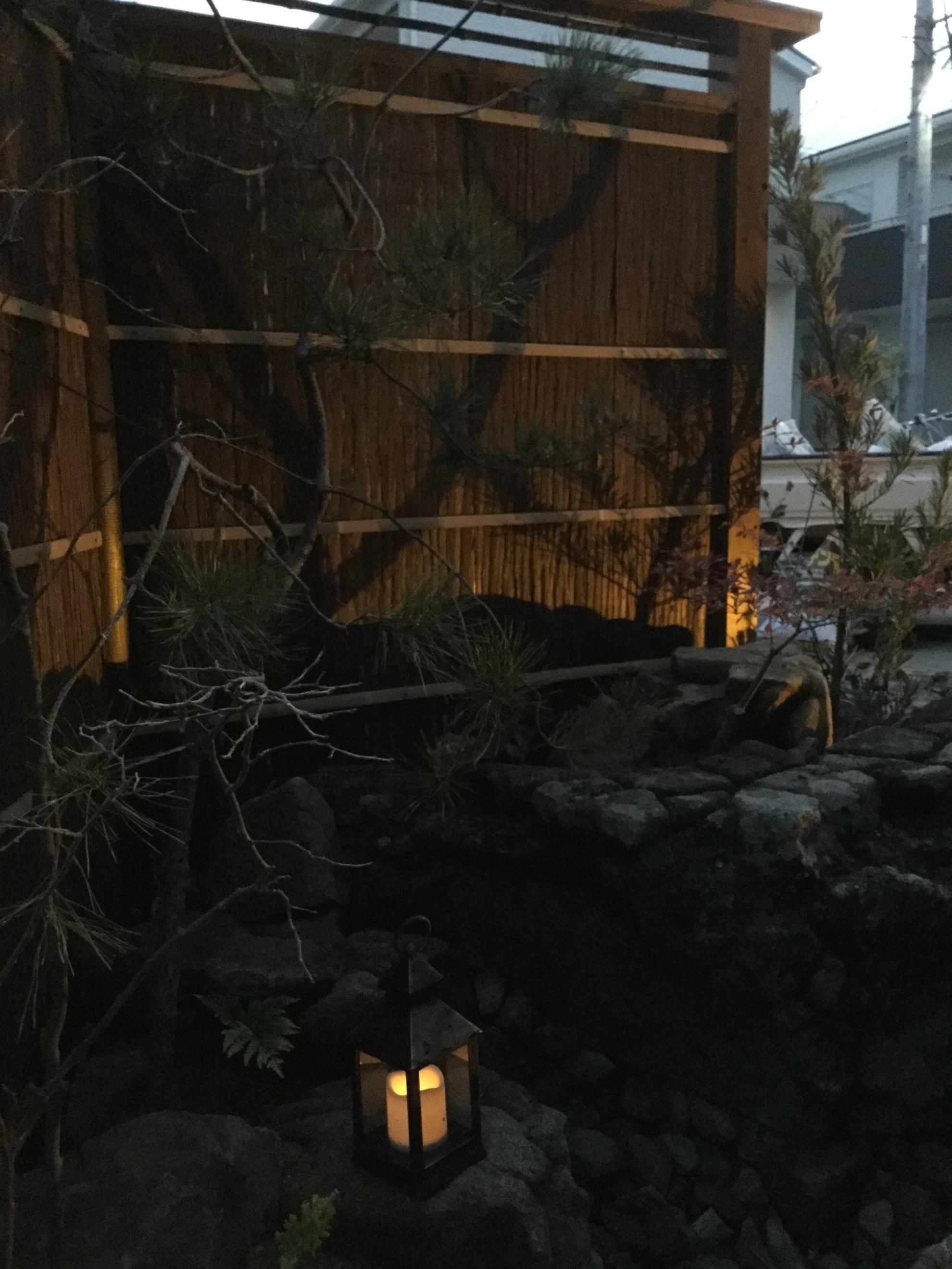 市中山居~苔と枯泉の庭~ 埼玉県(富士見市)-20