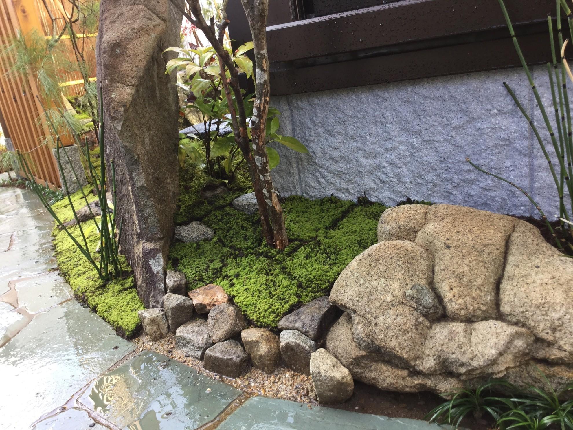 市中山居~苔と枯泉の庭~ 埼玉県(富士見市)-15