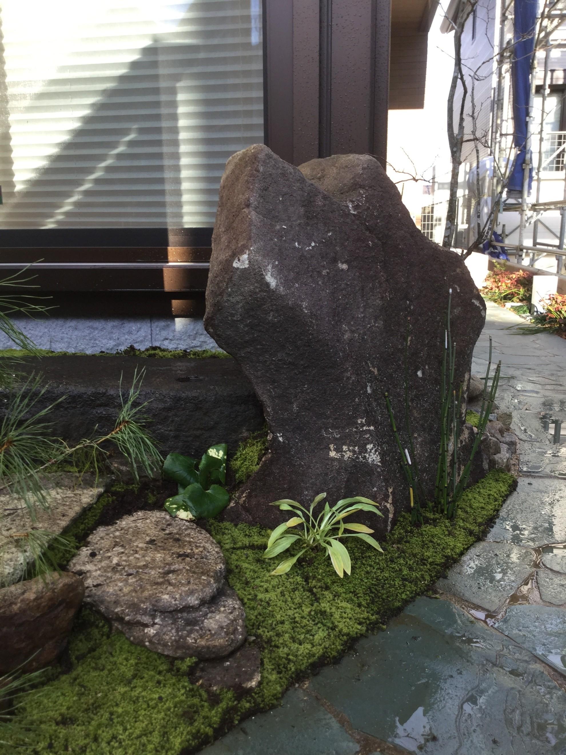 市中山居~苔と枯泉の庭~ 埼玉県(富士見市)-14