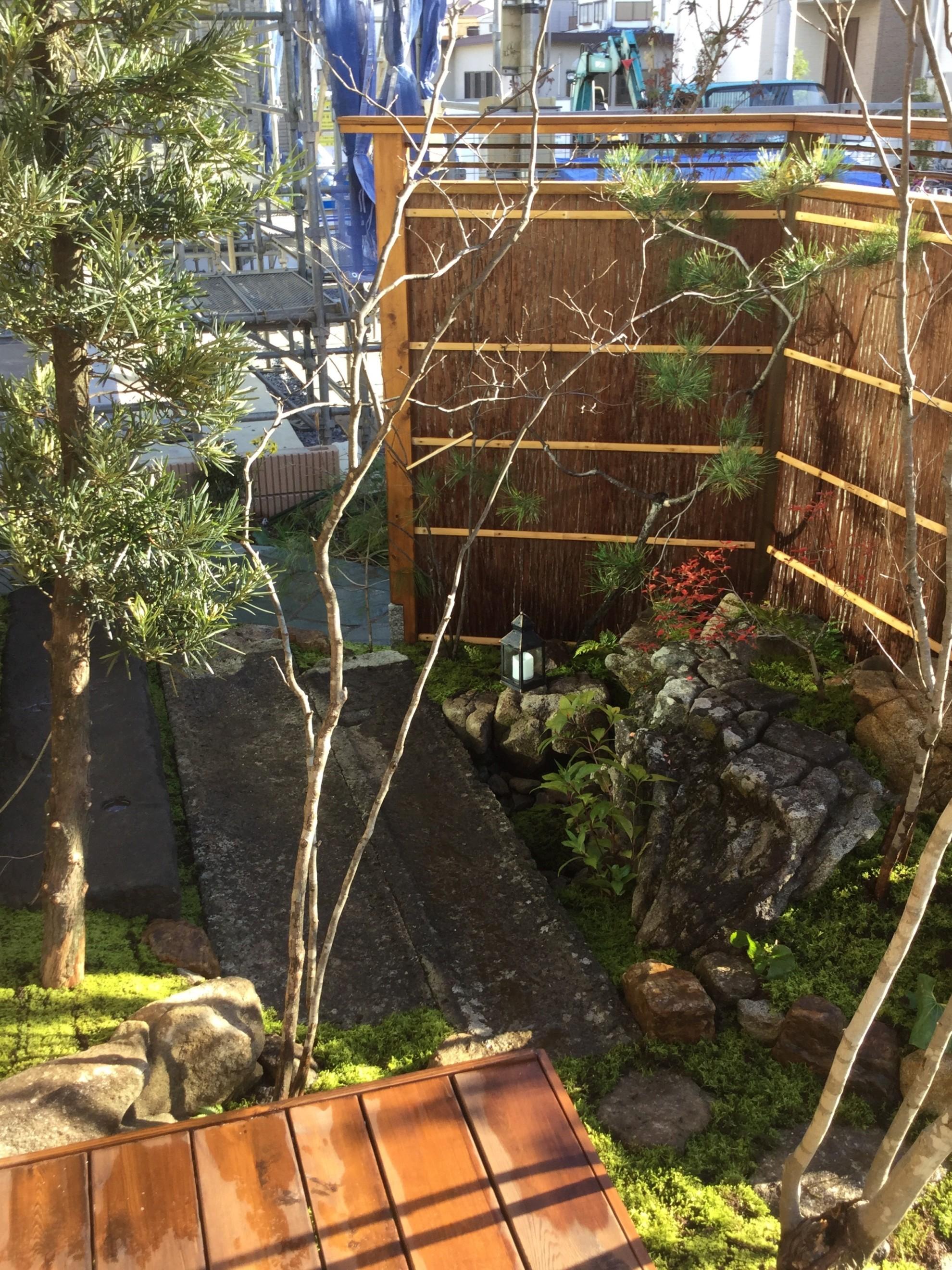 市中山居~苔と枯泉の庭~ 埼玉県(富士見市)-1