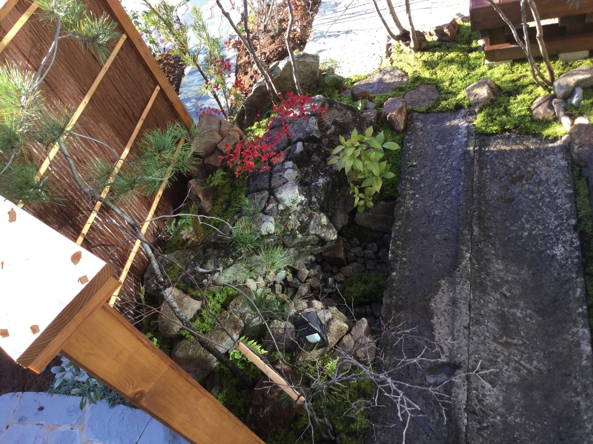 市中山居~苔と枯泉の庭~ 埼玉県(富士見市)-11