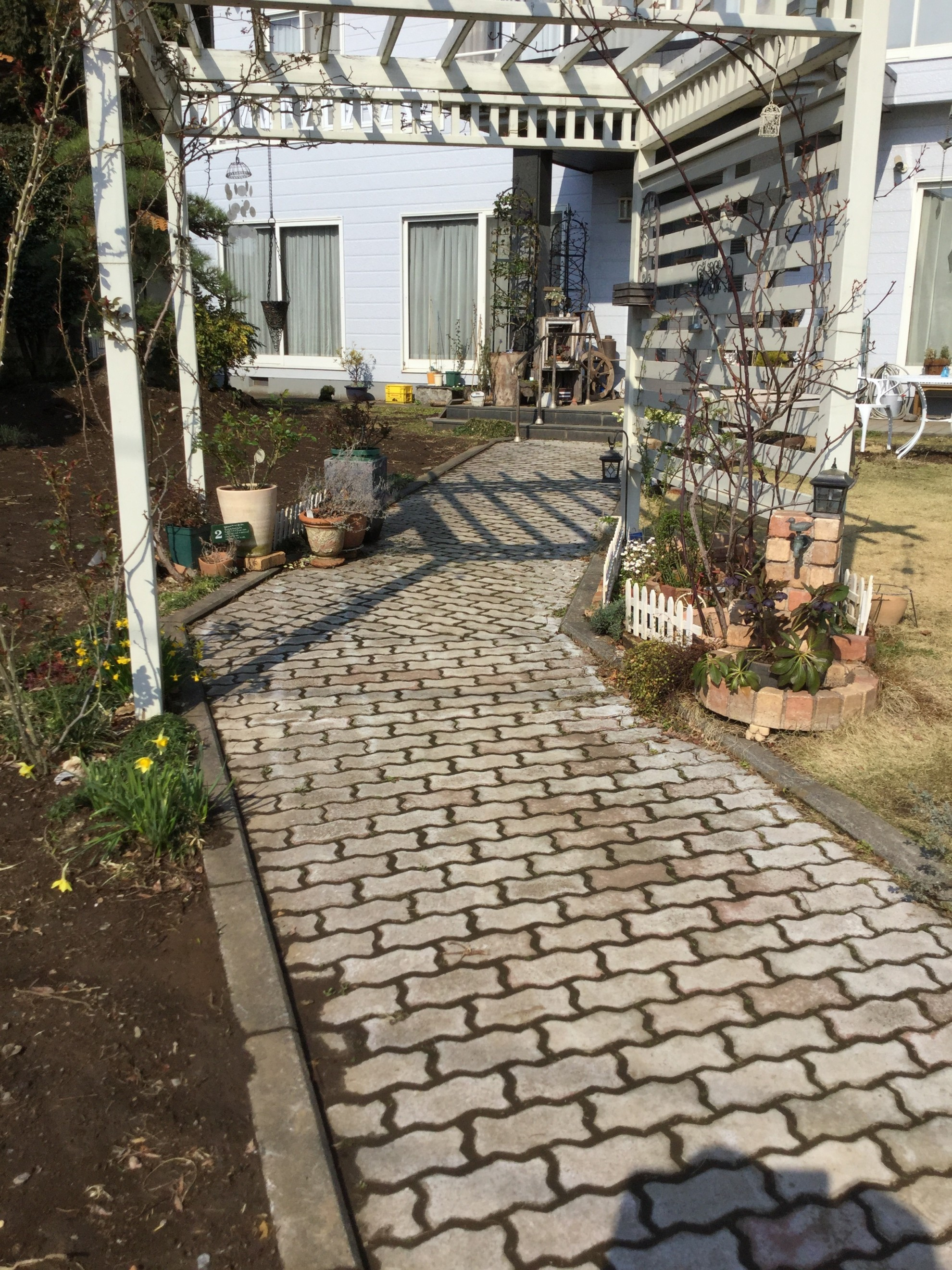 バラ蔵の庭1 埼玉県(狭山市)-9