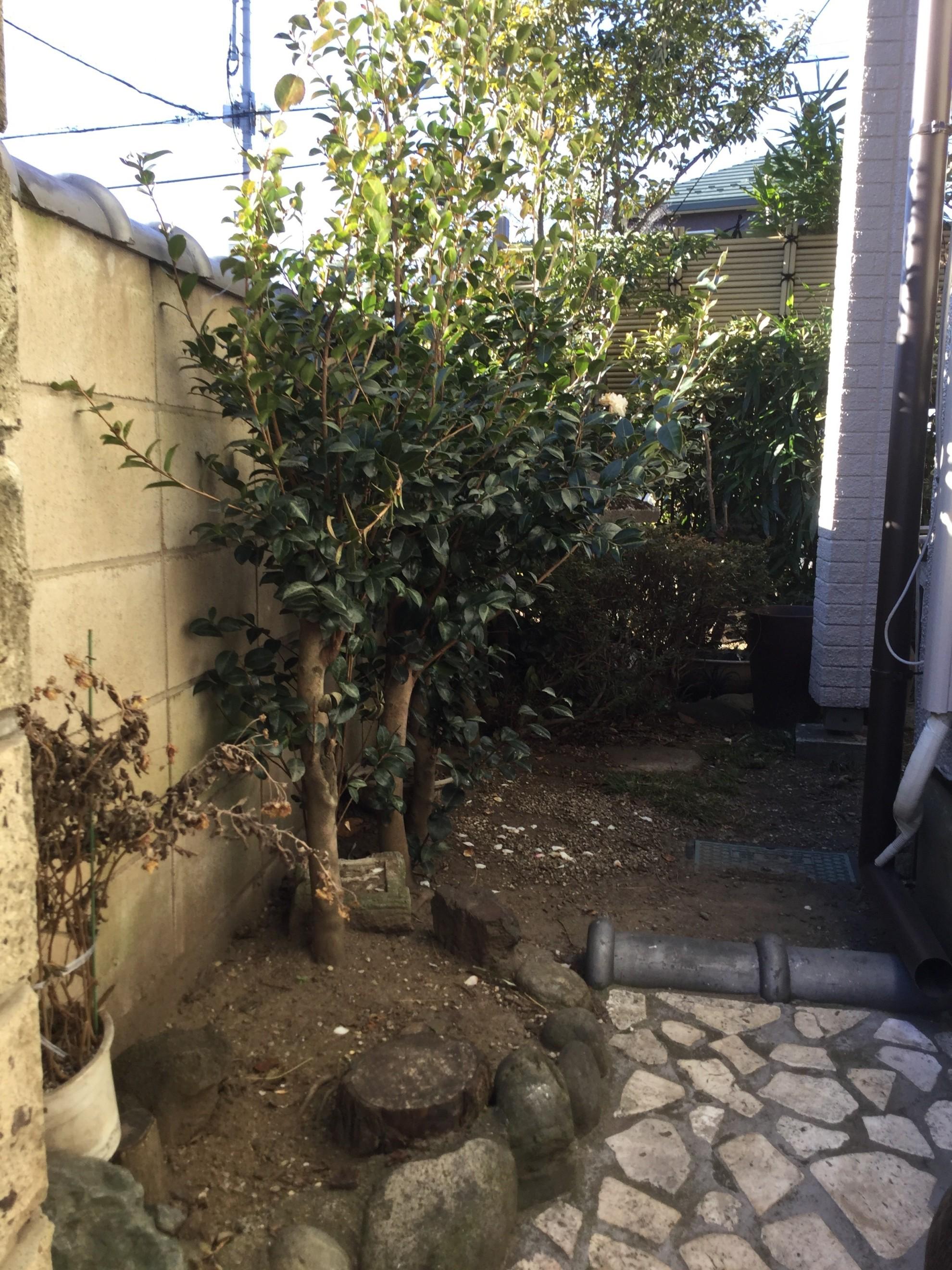 庭門のある暮らし 埼玉県(三芳町)-20
