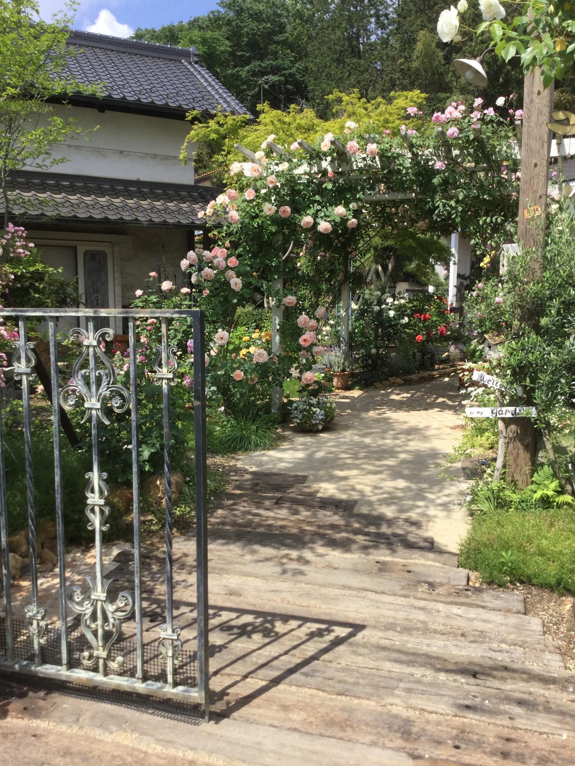 バラ蔵の庭1 埼玉県(狭山市)-19