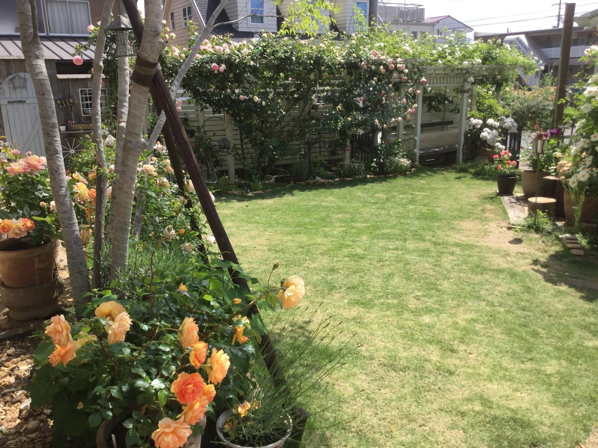 バラ蔵の庭2 埼玉県(狭山市)-18