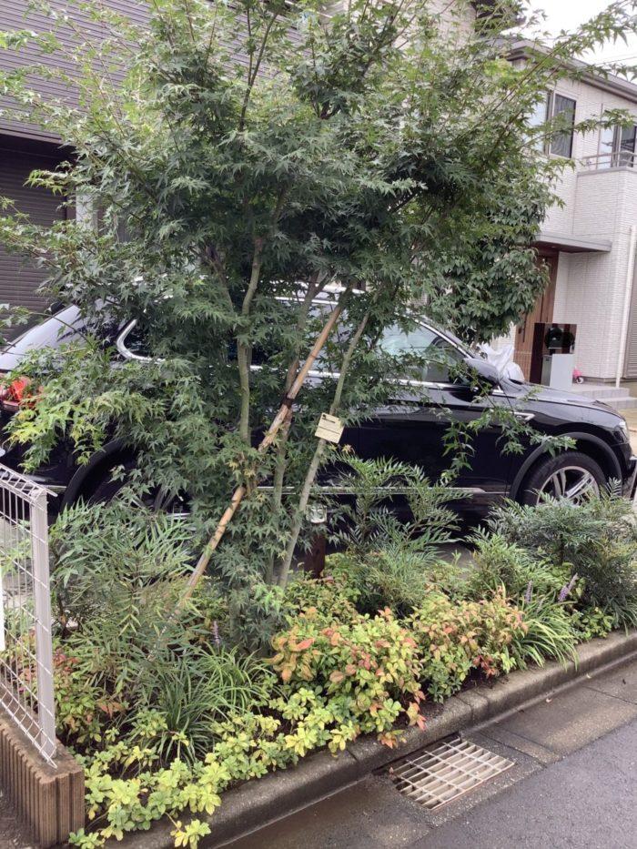 ウッドフェンスの庭 造園工事(埼玉県の事例)-2